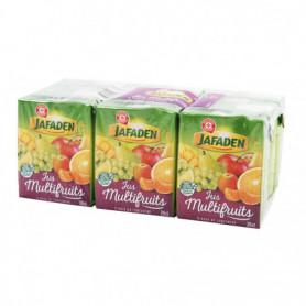 JUS 12 FRUITS BRIQUETTE JAFADEN 6X20CL